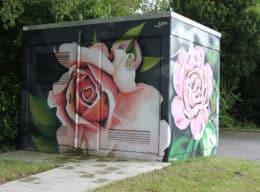 Blume/ Rose